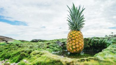 Ananas: proprietà e benefici